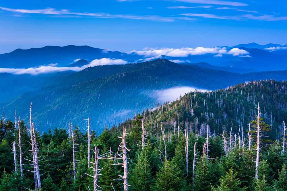 Incredible mountain views from Clingmans Dome.