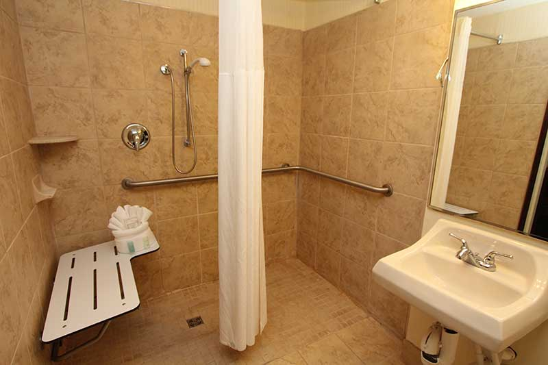 Bathroom with tile shower and hand rails in hotel room