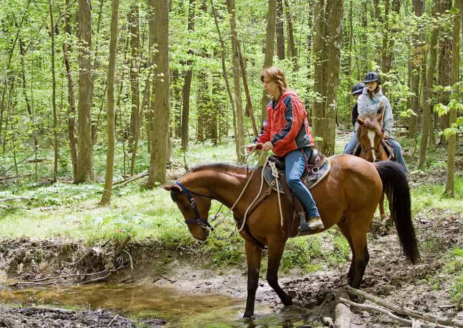 A family horseback riding in the woods.