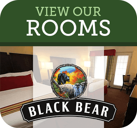 black bears view rooms