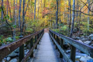 footbridge in the smoky mountains in fall